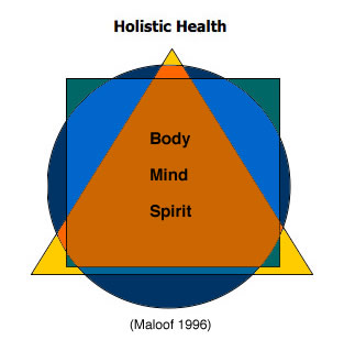 a holistic approach to life Holistic has many definitions -- some call it woo-woo, others spiritual, others educated i like to think of a holistic life as a wise life you live a life that you know will be better by looking at the big picture, living life as wholly and being aware of the impact of your action.