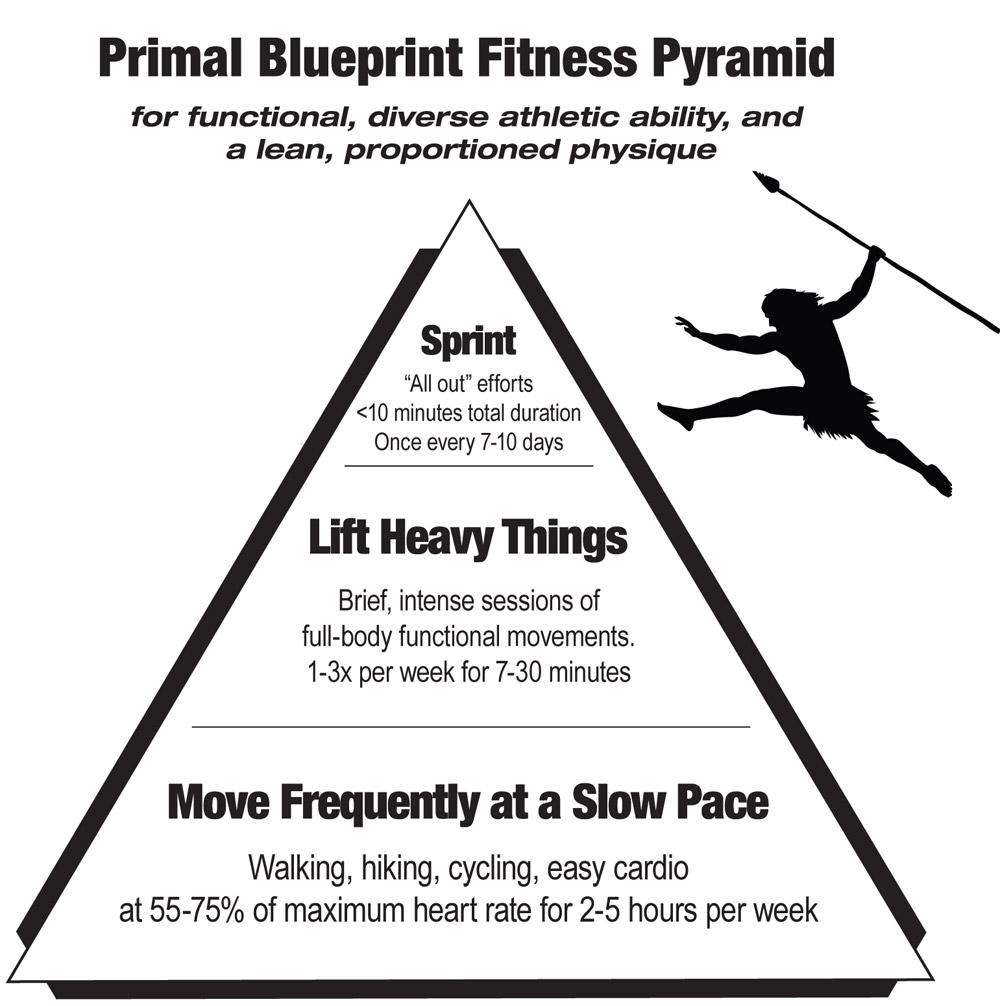 Register now paleo nutrition and primal living course holistic fitnesspyramidbw malvernweather Choice Image