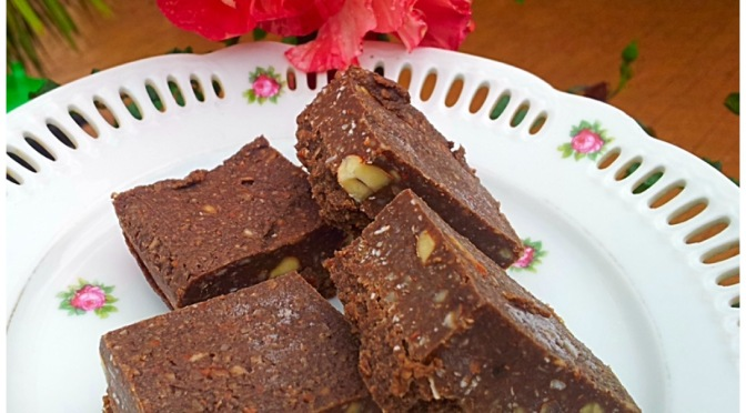 Raw Chocolate and Coconut Slice.
